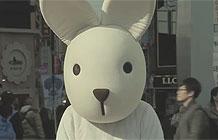 韩国首尔街头一只人形兔子见人就扯人家的头发.