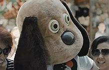 阿根廷流浪狗容所恶搞活动 街头玩偶
