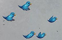Conservation公益组织营销活动 Twitter捐款
