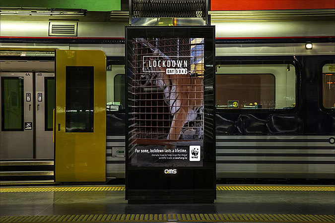 新西兰WWF疫情广告 真正的封锁