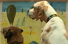 英国Morethan保险公司宣传活动 给狗狗看到艺术展
