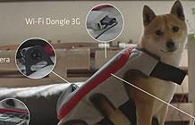 宝路狗粮创意智能硬件 狗狗也能自己发微博