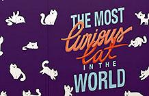 巴西维嘉猫粮创意图书 好奇逗猫书