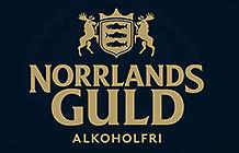 瑞典啤酒品牌NorrlandsGuld世界杯活动  啤酒拉花机