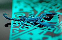 荷兰汽车品牌Abarth宣传活动 蝎子皮