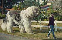 斯柯达汽车创意 大狗
