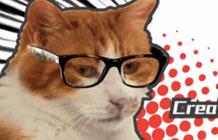 腾讯公益广告 猫咪总监