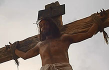 澳洲器官捐献公益广告 耶稣捐献