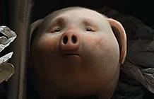 桑坦德银行创意广告 走失的小猪
