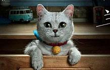 淘宝拍了一部色色版的机器猫广告