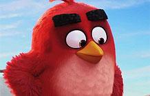 愤怒小鸟3D动画电影首支宣传广告