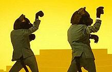 日本宅急便40周年广告 魔性猫咪舞