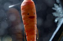 Aldi超商2016圣诞节广告 胡萝卜