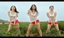 泰国广告之《史上最没节操的农药广告!》