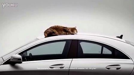 奔驰 CLA 汽车广告 猫咪篇